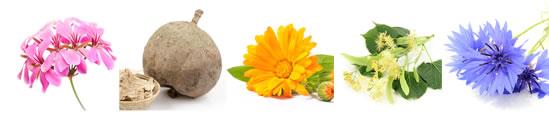 14種類の天然植物由来成分・精油配合。