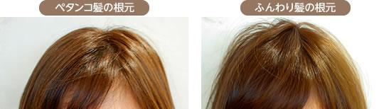 ペタンコ髪の根元・ふんわり髪の根元
