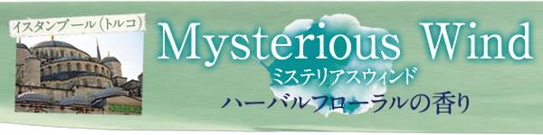 Mysterious Wind ミステリアスウィンド ハーバルフローラルの香り