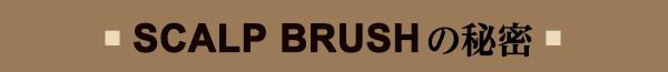 SCALP BRUSHの秘密