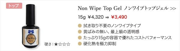 Non Wipe Top Gel ノンワイプトップジェル