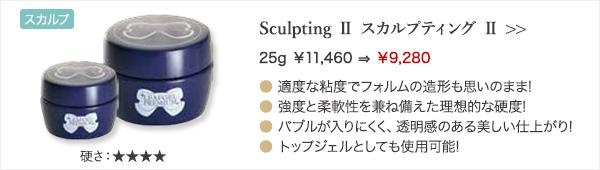 Sculpting Ⅱ スカルプティング Ⅱ