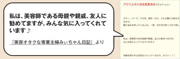 ブログ『美容オタクな専業主婦みぃちゃん日記』より