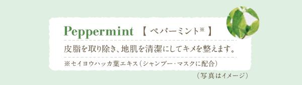 Peppermint ペパーミント